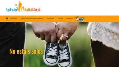 web_fundacion_bertin_osborne
